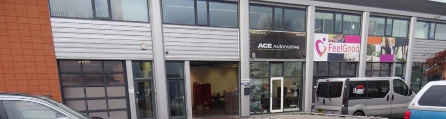 ACE Automotive pand